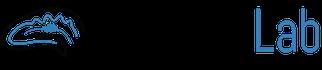 Buzsaki Lab Logo