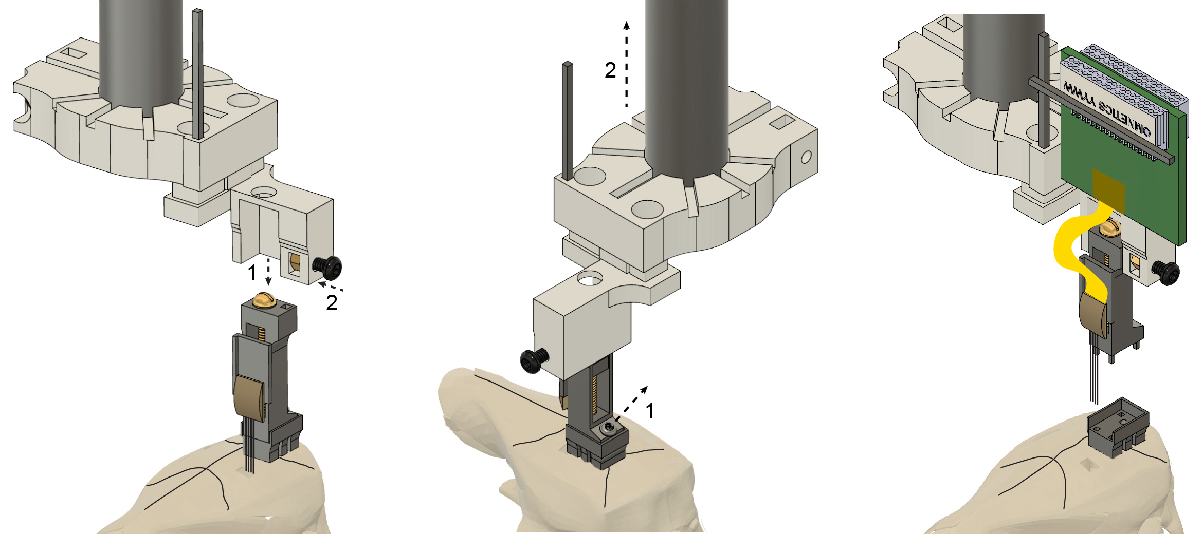 Metal microdrive and head cap system for silicon probe recovery in freely moving rodent