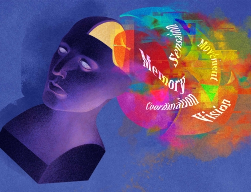 The Brain Doesn't Think the Way You Think It Does – our contribution